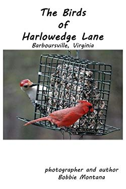 The Birds of Harlowedge Lane: Barboursville, Virginia