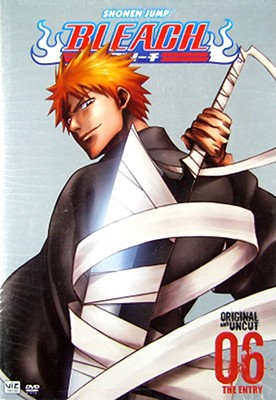 Bleach Volume 6