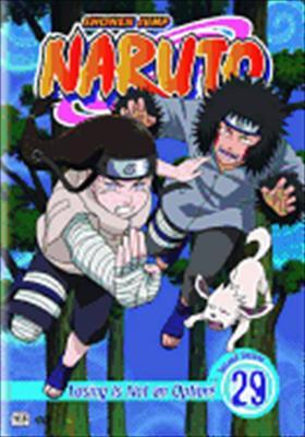 Naruto Volume 29
