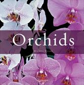 Orchids 7839981