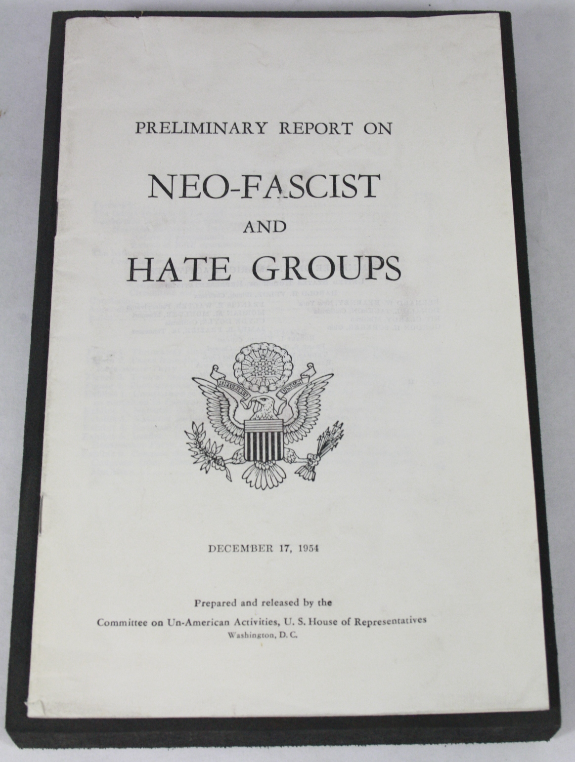 Preliminary Report on Neo-Fascist and Hate Groups, December 17, 1954 BWB21524791