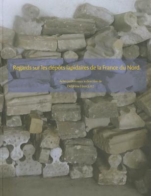 Regards Sur les Depots Lapidaires de la France Du Nord 9782902685820