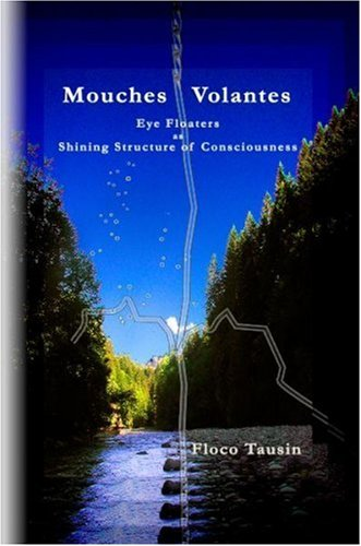 Mouches Volantes - Eye Floaters as Shining Structure of Consciousness 9783033003378