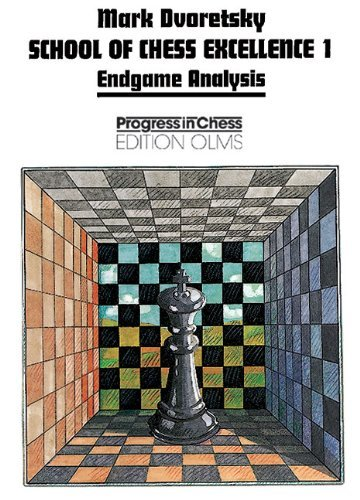 Endgame Analysis 9783283004163