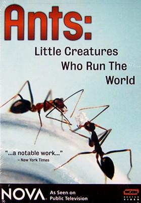 Nova: Ants, Little Creatures Who Run the World