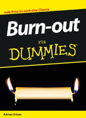 Burnout Fur Dummies 9783527704705