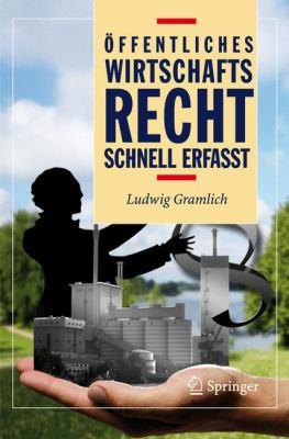 Ffentliches Wirtschaftsrecht - Schnell Erfasst 9783540486923