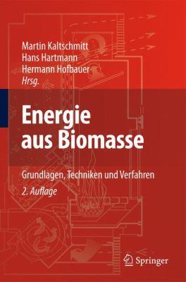 Energie Aus Biomasse: Grundlagen, Techniken Und Verfahren 9783540850946
