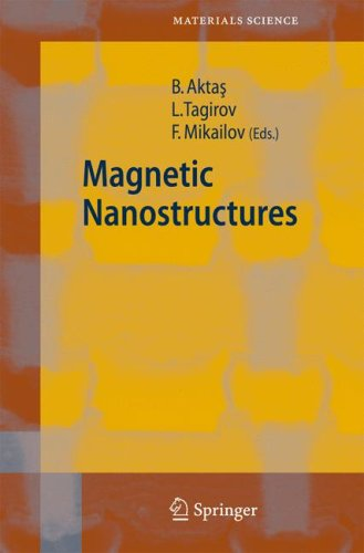 Magnetic Nanostructures 9783540493341