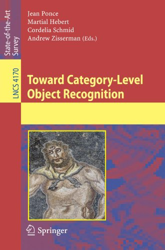 Toward Category-Level Object Recognition 9783540687948