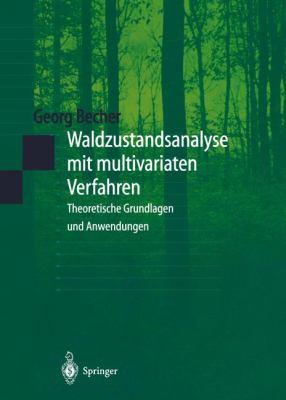 Waldzustandsanalyse Mit Multivariaten Verfahren: Theoretische Grundlagen Und Anwendungen 9783540652397
