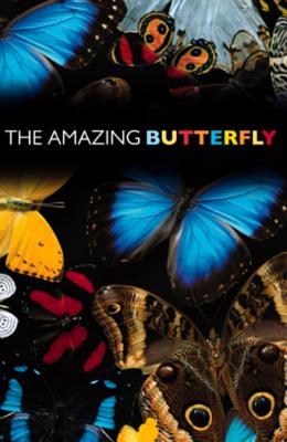 Amazing Butterfly: 25-Pack Tracts