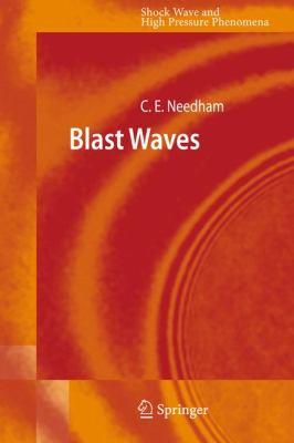 Blast Waves 9783642052873