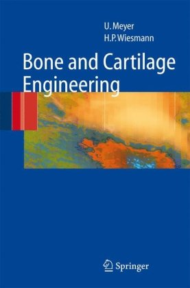 Bone and Cartilage Engineering 9783642064685