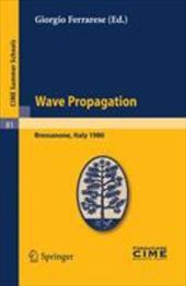 Wave Propagation: Lectures Given at a Summer School of the Centro Internazionale Matematico Estivo (C.I.M.E.) Held in Bressanone ( 8008339