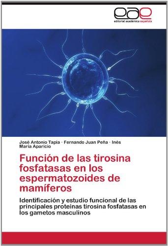 Funci N de Las Tirosina Fosfatasas En Los Espermatozoides de Mam Feros 9783659026461