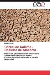C Rcel de Calama - Desierto de Atacama 20729040