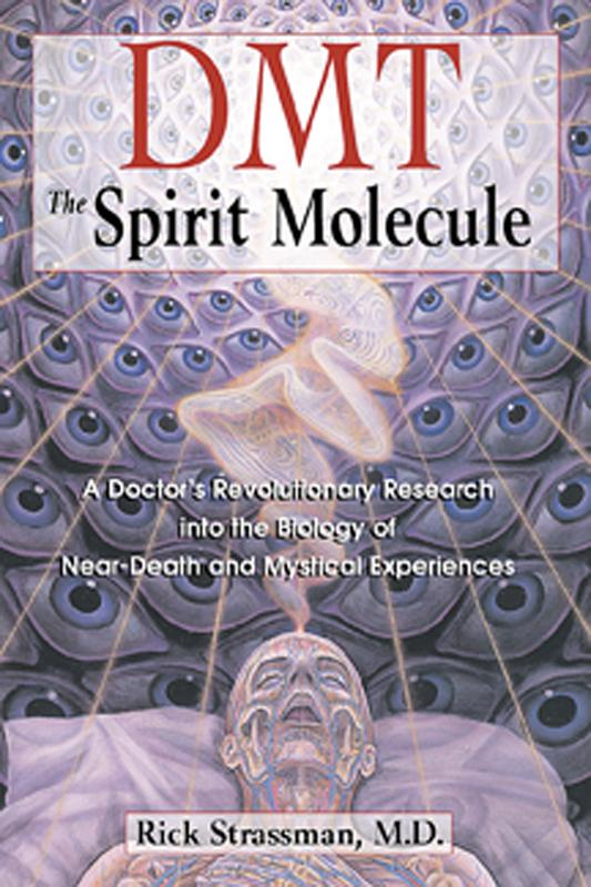 DMT: The Spirit Molecule: A Doctor's Revolutionary Research into the Biology of Near-Death and Mystical Experiences EB2370002753142