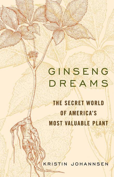 Ginseng Dreams EB2370003787160
