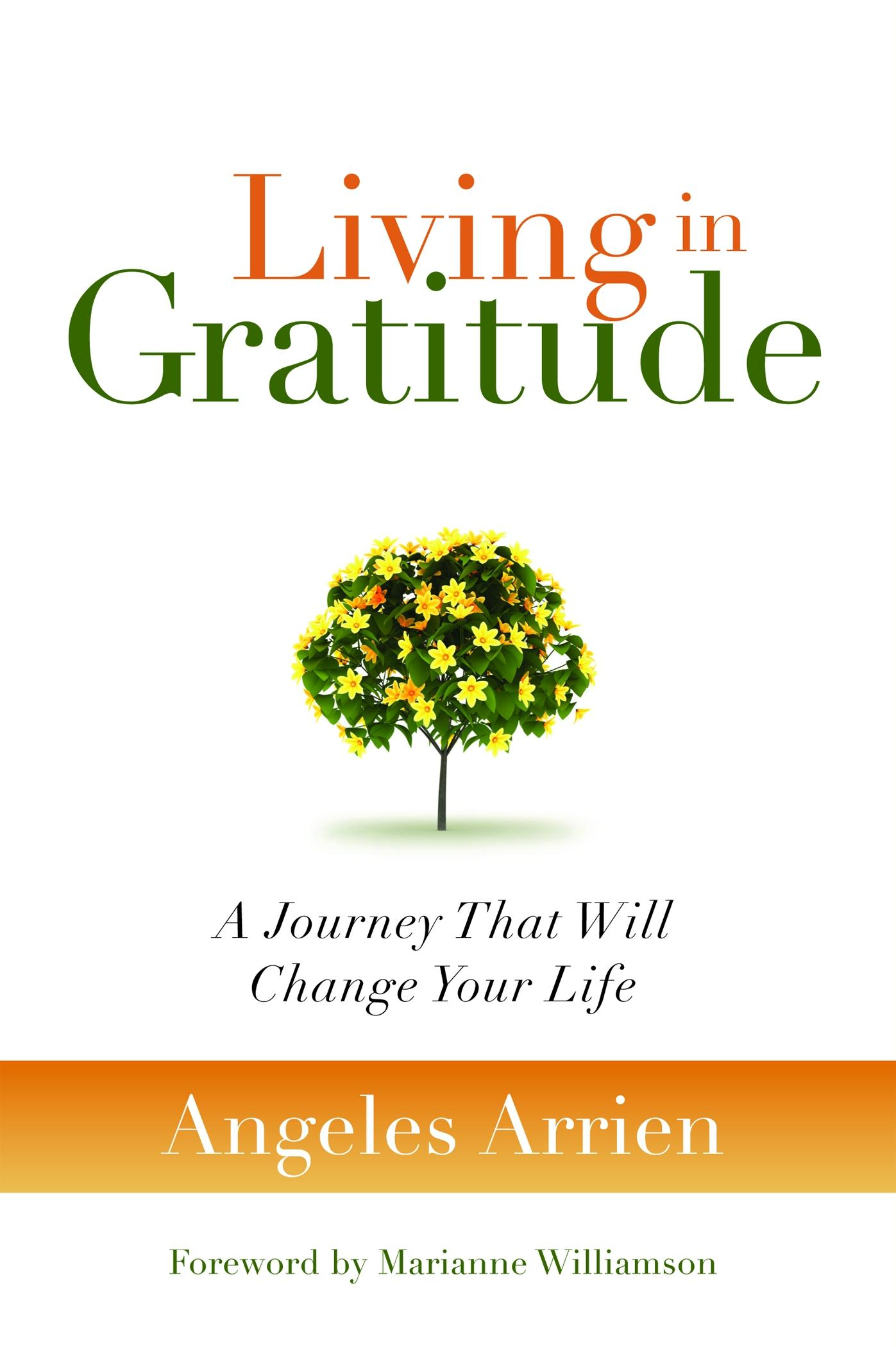 Living in Gratitude: A Journey That Will Change Your Life EB2370003841992