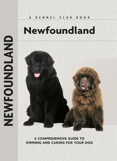 Newfoundland EB2370003843583