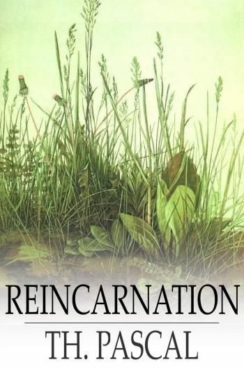 Reincarnation EB2370002798617