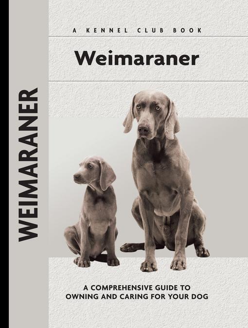 Weimaraner EB2370004416434