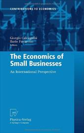 The Economics of Small Businesses: An International Perspective