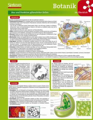 Botanik Im Berblick 9783827421302