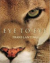 Eye to Eye 8041475