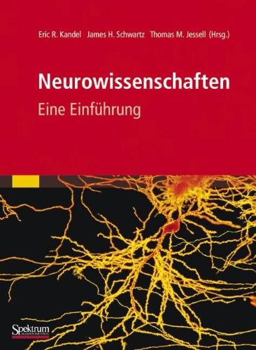 Neurowissenschaften: Eine Einf Hrung 9783827429056