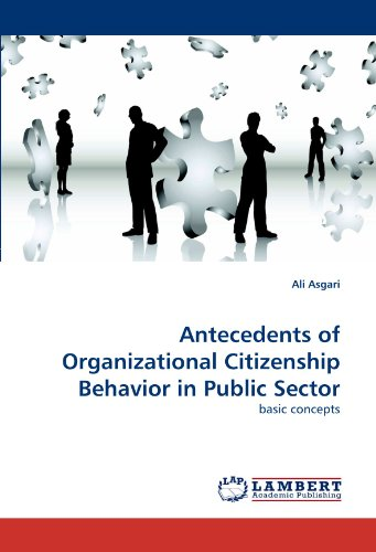 Antecedents of Organizational Citizenship Behavior in Public Sector