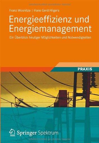 Energieeffizienz Und Energiemanagement: Ein Berblick Heutiger M Glichkeiten Und Notwendigkeiten 9783834819413