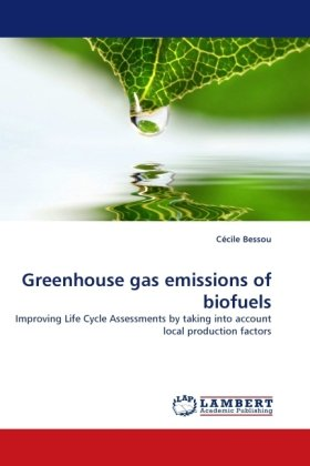 a research on alternative gases biofuels Generations of biofuels  3rd generation biofuels present the best possibility for alternative fuel because they therefore produces less greenhouse gases.