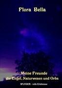 Meine Freunde Die Engel, Naturwesen Und Orbs 9783839111109