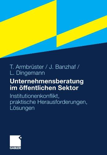 Unternehmensberatung Im Ffentlichen Sektor: Institutionenkonflikt, Praktische Herausforderungen, L Sungen 9783834923042