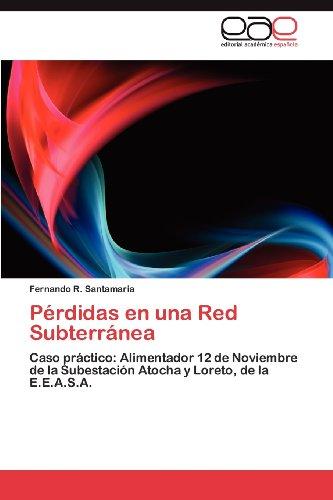 P Rdidas En Una Red Subterr NEA 9783844346114