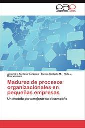 Madurez de Procesos Organizacionales En Peque as Empresas 18824417