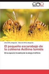 El Peque O Escarabajo de La Colmena Aethina Tumida 18267857