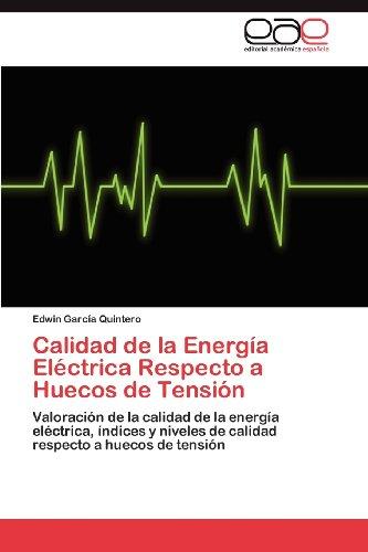 Calidad de La Energ a El Ctrica Respecto a Huecos de Tensi N 9783848477616