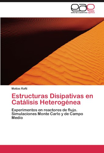 Estructuras Disipativas En Cat Lisis Heterog NEA 9783847361701