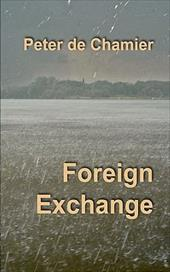 Foreign Exchange 10985480