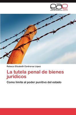La Tutela Penal de Bienes Jur Dicos 9783847365082