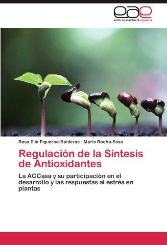 Regulaci N de La S Ntesis de Antioxidantes 9783846572115