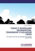 Today's Woodland Degradation, Tomorrow's Fuelwood Crisis 9783844398144
