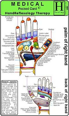 Hand Reflexology Therapy 9783868110166