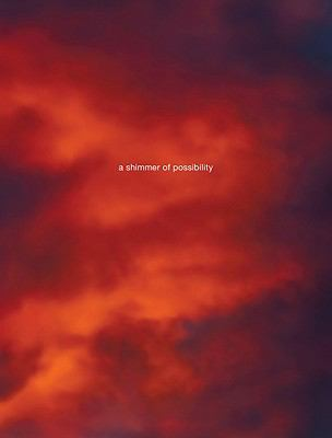 Paul Graham: A Shimmer of Possibility 9783865218629