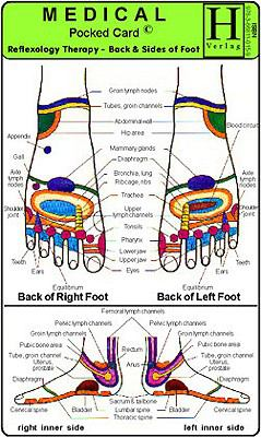 Reflexology Therapy, Back & Sides of Foot 9783868110159