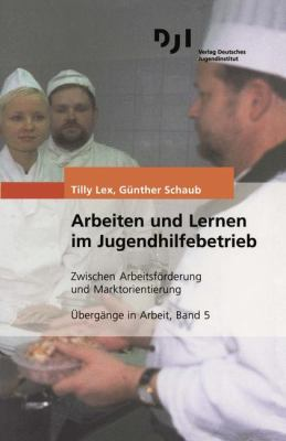 Arbeiten Und Lernen Im Jugendhilfebetrieb: Zwischen Arbeitsf Rderung Und Marktorientierung 9783879664092