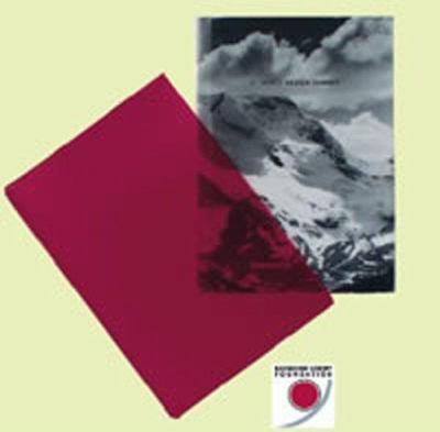 St. Moritz Design Summit 9783897901759